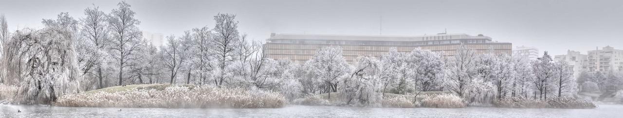 Lac de Créteil et préfecture en hiver