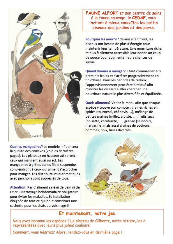 Les oiseaux en hiver page 1