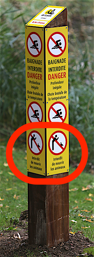 Signalisation des interdictions - Octobre 2016